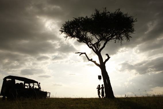 masai_mara_kuoni_lizzy_courage_reel_2